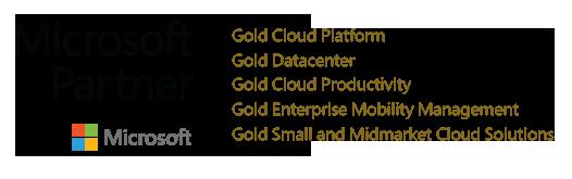 Microsoft Partner, logo1, רישוי תוכנה, ייעוץ תוכנה, שירותים מקצועיים בענן