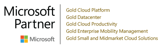 Microsoft Partner, logo1